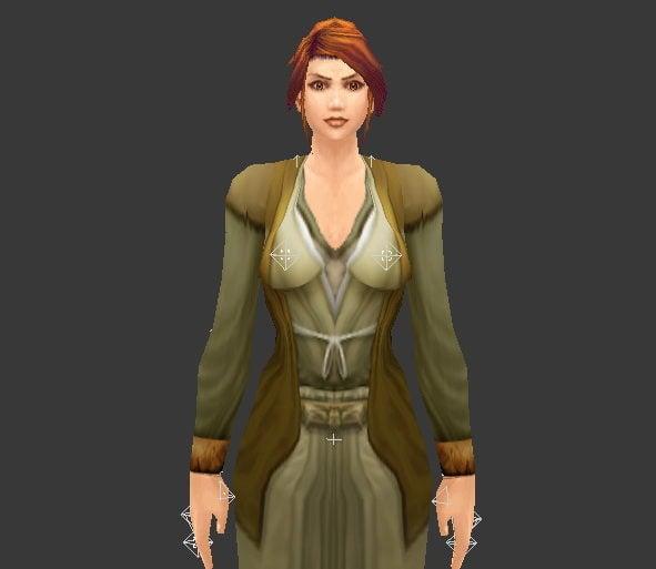 Medieval Noblewoman