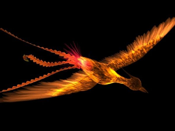 طائر الفينيق الرسوم المتحركة & Rigged