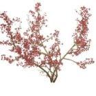 プルナスアビウムワイルドチェリーツリー
