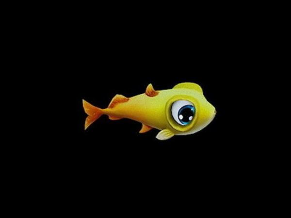 سمكة صفراء صغيرة