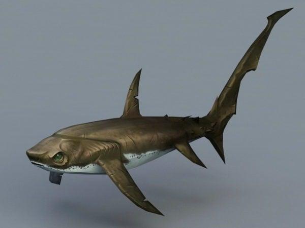 سمك القرش الدراس