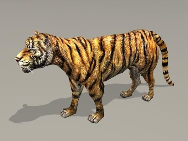 Plataforma de tigre