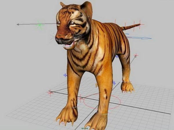 Tiger Rig