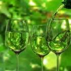 مشهد النبيذ