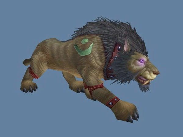 Worgen Druid القط شكل حرف