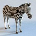 Zebra dyr