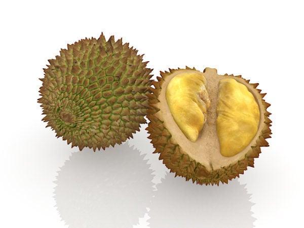 الفاكهة دوريان الاستوائية