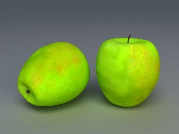 Realistic Granny Smith Apple