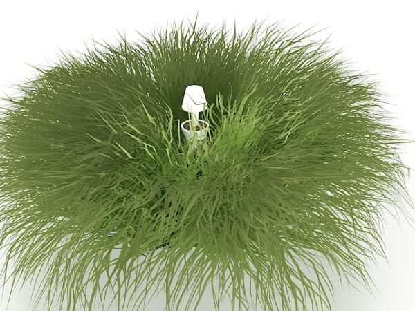 Garden Grass And Lawn Sprinkler