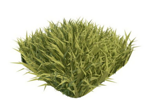 Realistic Grass Piece