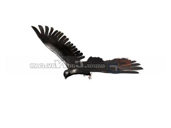 Animal Hawk Eagle