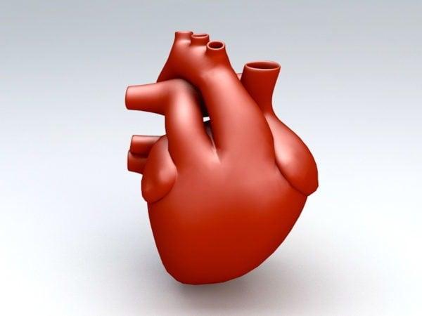 قلب الانسان