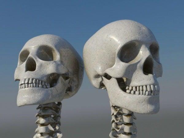 مجموعات جمجمة بشرية