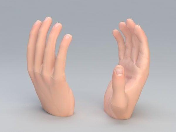 اليد اليسرى الإنسان