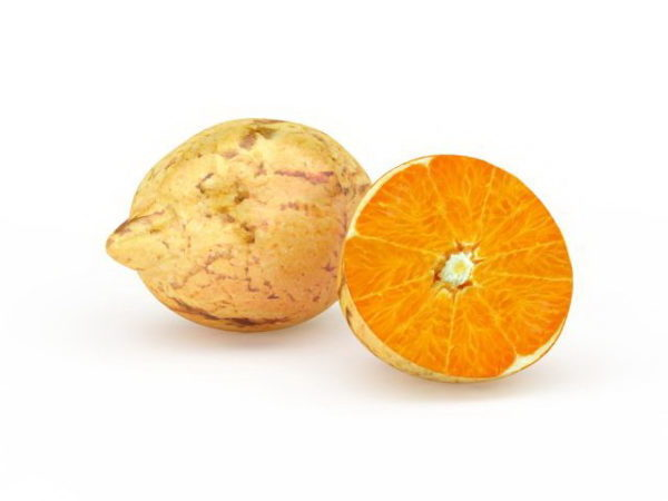 سرة البرتقال الفاكهة