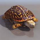 Animal Painted Turtle