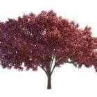 Landscape Red Tree