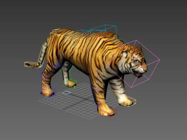 Wild Tiger Rigged