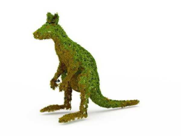 Puutarhan topiary-kenguru