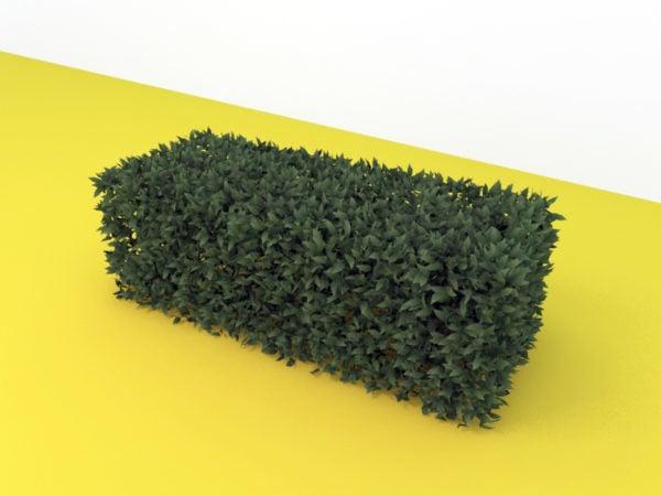 Hedge suorakulmio