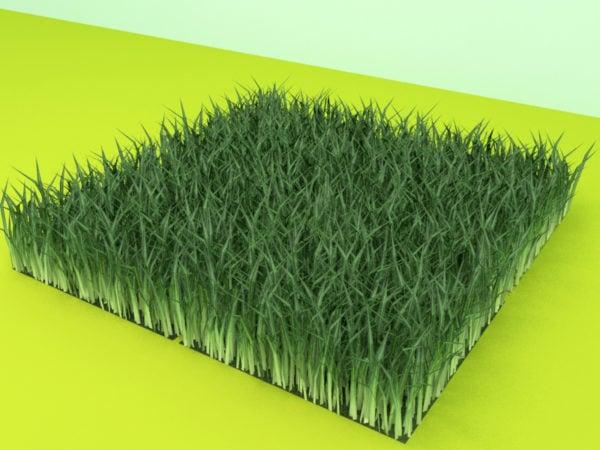芝生フィールドモジュール