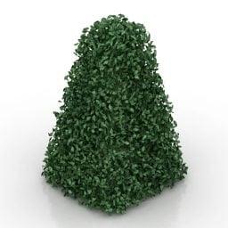 Hedge-muotoinen koristelu