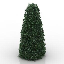 Hedge koristeellinen