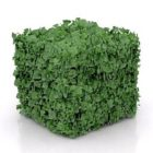 Cubic Hedge Bush
