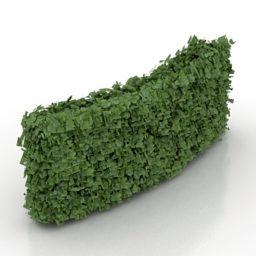 High Curved Hedge Bush