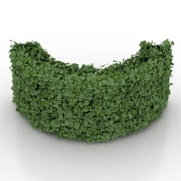 C Shape Hedge Bush