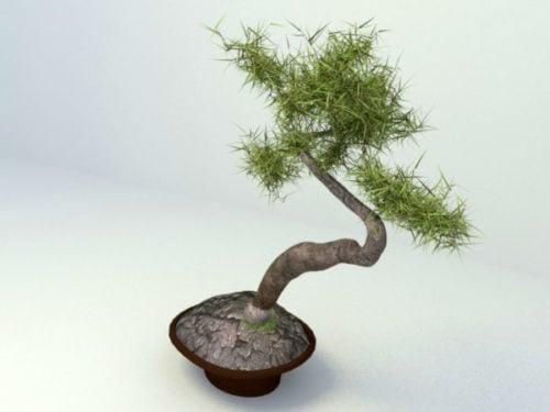 Japanilainen bonsai-istutuskone