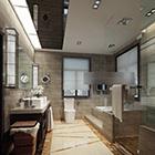 Toilet Interior V12