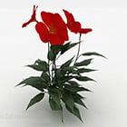 Сад красный цветок растение