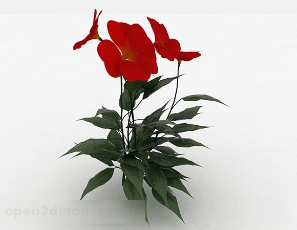 Garden Red Flower Plant