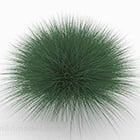 Green Grass Bush