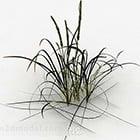 Kleiner grüner Grasbusch