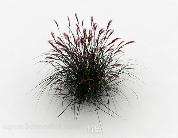 Outdoor Wildflower Design