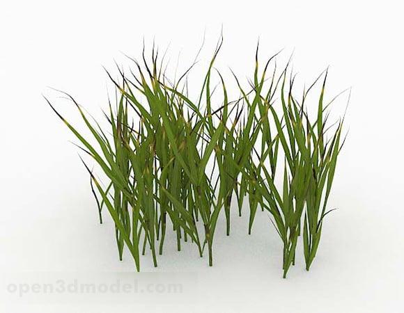 Green Grass Design