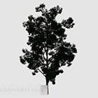 森の木V1