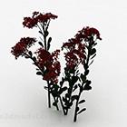 Czerwone Kwiaty I Krzewy