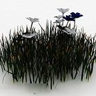 Niebieskie I Białe Kwiaty Krzewów