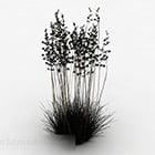 Dense Grass Plant