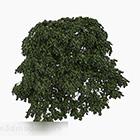 Zielona Krzewy Owalne