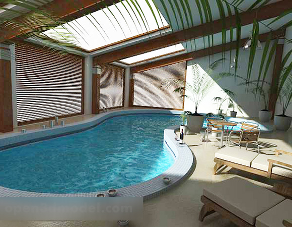 Indoor Pool Design Interior