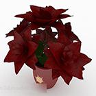 Czerwona ceramiczna roślina doniczkowa