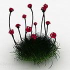 Giardino del Mar Rosso Dianthus Flower