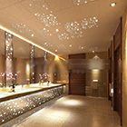 Luxurious Toilet Decoration Interior