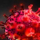 Realistic Corona Covid-19 Virus