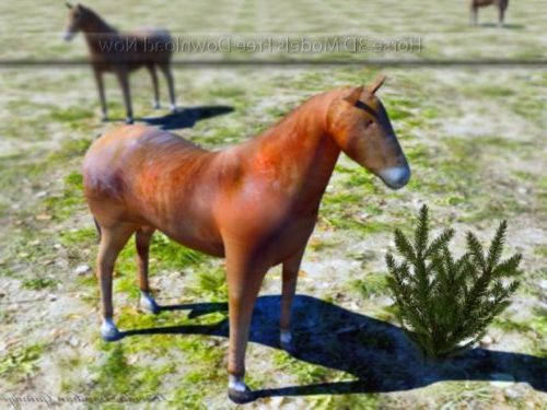 Wild Horse Lowpoly