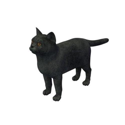 Black Cat Lowpoly
